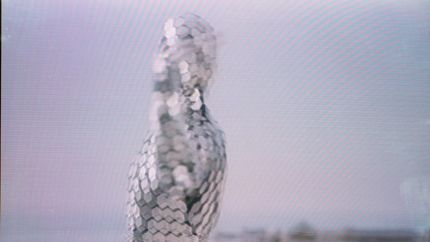 A man in a full body disco suit dancing next the sea in the morning sunlight with overlayed video distortion effects   Shutterstock HD Video #1074683594