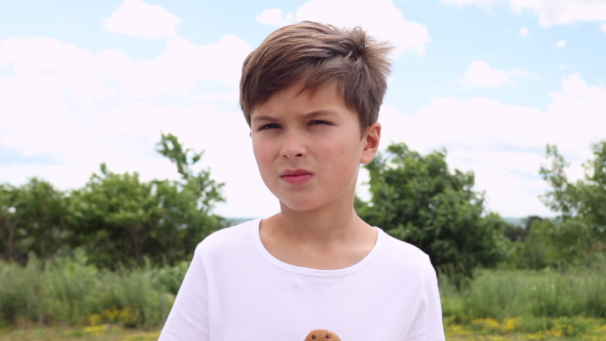 Boy eating chocolate chip cookies   Shutterstock HD Video #1074687266