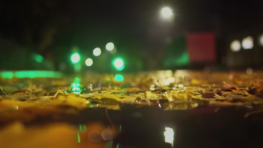 Fall. Cars drive on wet road during rain at night in autumn. Leaves fall into a puddle. Crossroad with working traffic light. Bad and dangerous weather conditions. Low angle shot