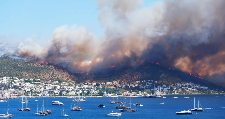 Breaking news: Flames and smoke from wildfires cover the landscape. Clouds of smoke from bush fire blew into the harbor of Bodrum, making it look like an apocalyptic landscape. Escaping to the sea | Shutterstock HD Video #1076831162