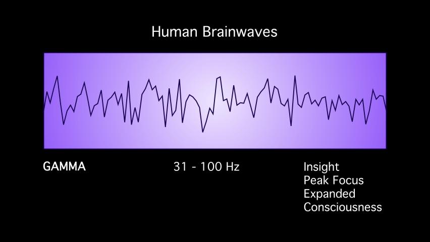 Gamma Human Brain Waves Diagram Illustration Animation on Black Background Royalty-Free Stock Footage #1077707792