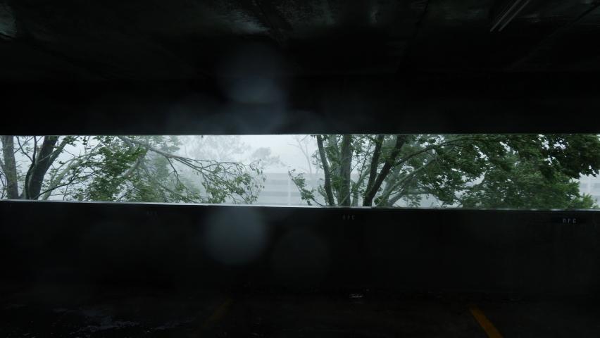 Hurricane Ida Snaps Tree In Half In Houma, Louisiana USA During Category 4 Wind Gusts