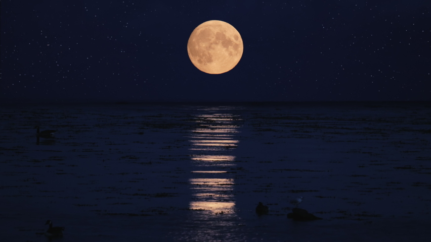 Ocean At Night With A Full Moon And Stars In The Sky. Real Time 4k. Location: Sweden, Scandinavia.  Royalty-Free Stock Footage #1078776695