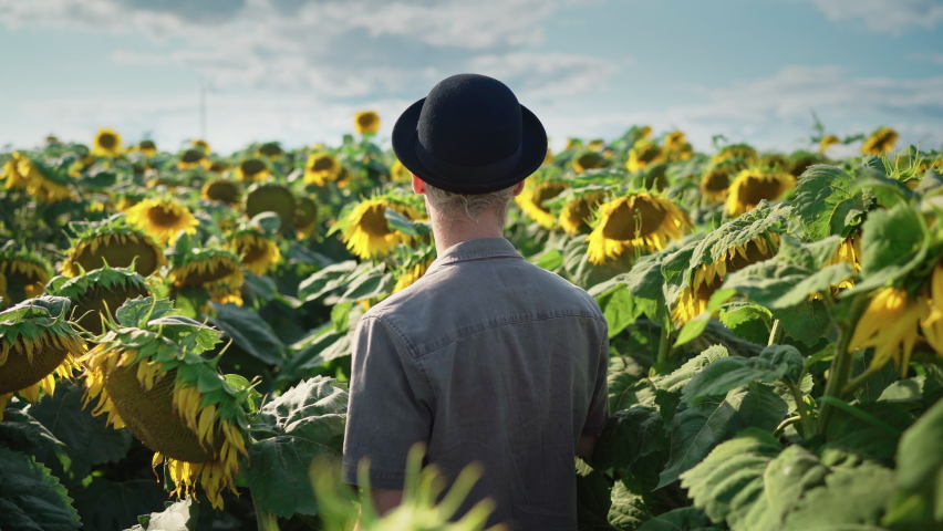 Young handsome serious blond caucasian guy with dyed blond hair, piercing in light trousers, gray shirt straightens black hat in a sunflower field on a sunny day | Shutterstock HD Video #1080842495