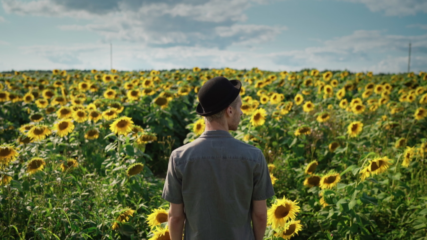 A young handsome Caucasian guy with dyed blond hair, in light trousers, a gray shirt, a black hat walks along a sunflower field on a sunny day, goes from the camera into the frame | Shutterstock HD Video #1080842498