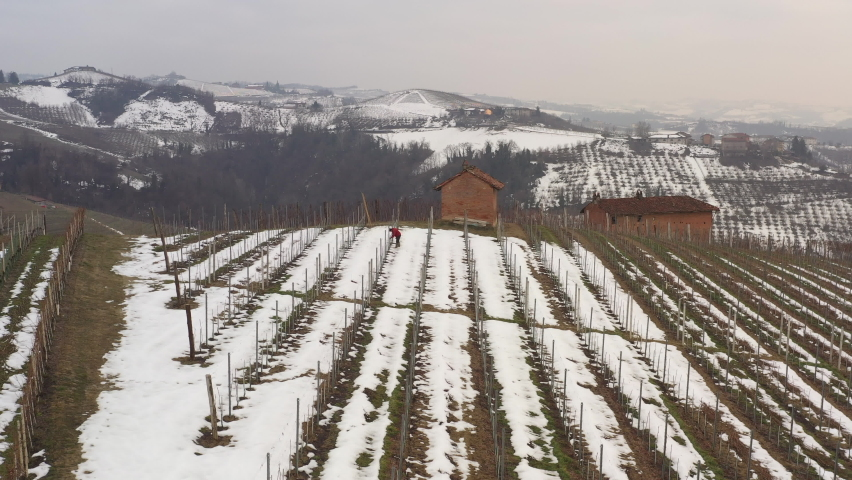 Drone flying over a vineyard in Italian Piedmont, near city of Alba. A farmer working in sown. Farms, hills, panoramic view. Snow in winter season. 4K | Shutterstock HD Video #1081059389