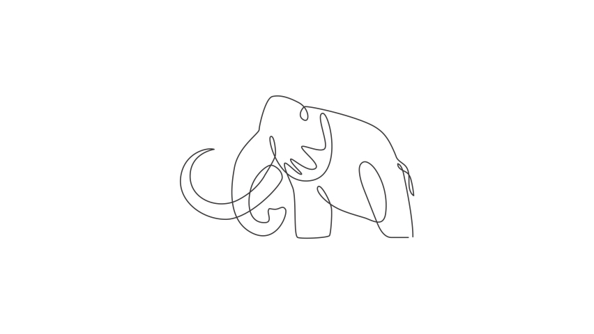 Animated self drawing of one continuous line draw big mammoth company logo identity. Prehistoric animal from ice age icon concept. Full length single line animation illustration. | Shutterstock HD Video #1081065746