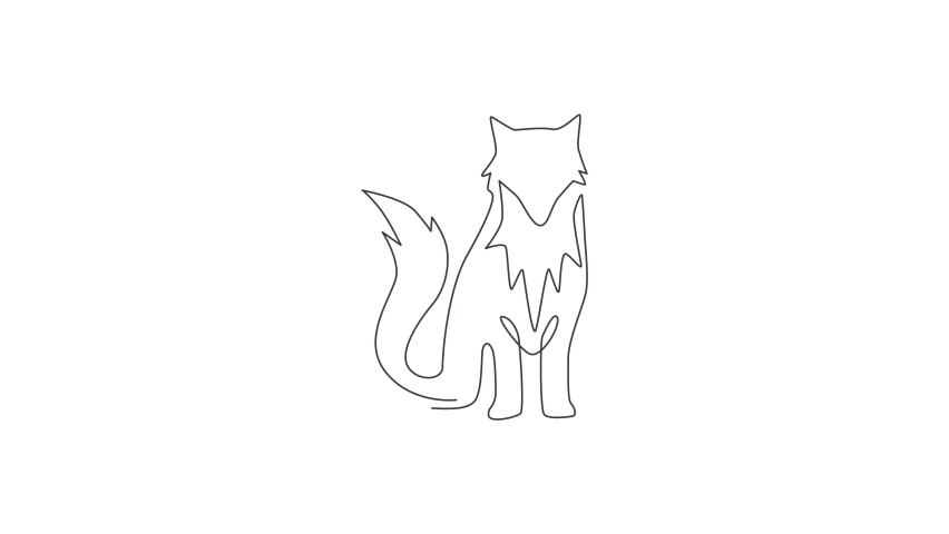 Animated self drawing of single continuous line draw cute fox corporate logo identity. Mammals zoo animal icon concept. Full length one line animation illustration. | Shutterstock HD Video #1081065749