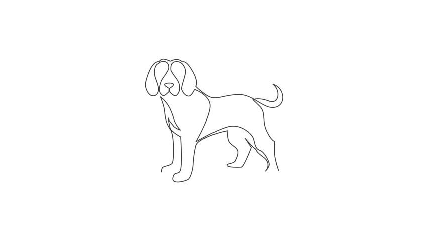 Animated self drawing of one continuous line draw simple cute beagle puppy dog icon. Mammals animal logo emblem vector concept. Full length single line animation illustration. | Shutterstock HD Video #1081065824