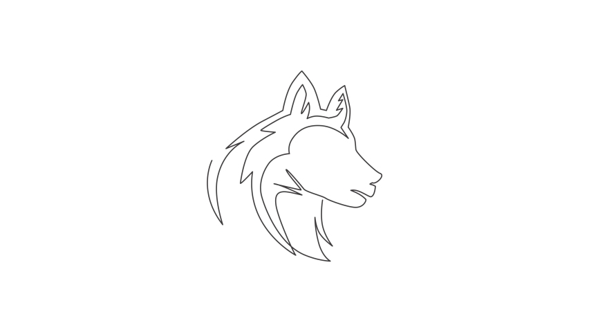 Animated self drawing of one continuous line draw simple cute siberian husky puppy dog head icon. Mammals animal logo emblem vector concept. Full length single line animation illustration. | Shutterstock HD Video #1081065830