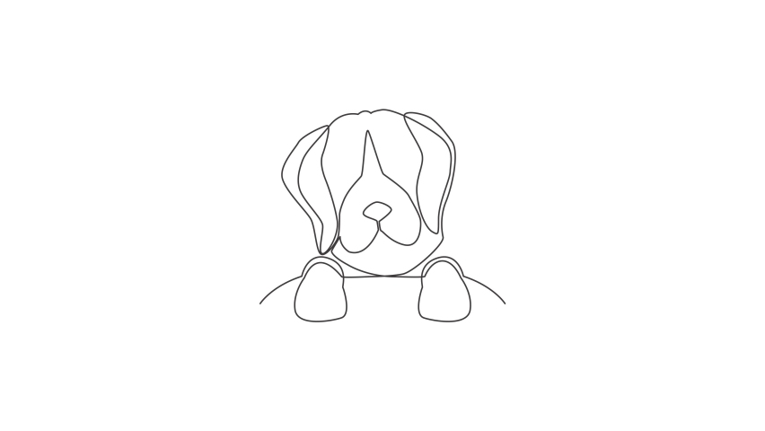 Animation of one single line drawing of simple cute beagle puppy dog head icon. Pet shop logo emblem vector concept. Continuous line self draw animated illustration. Full length motion. | Shutterstock HD Video #1081065839