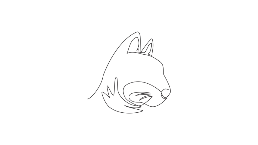 Animated self drawing of single continuous line draw cute kitten cat head icon. Kitty pet animal logo emblem vector concept. Full length one line animation illustration. | Shutterstock HD Video #1081065854