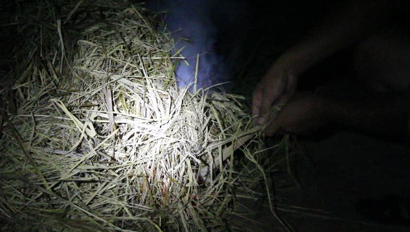 HAI DUONG, VIETNAM, June, 12; Grilling fish on campfire  on June 12, 2015 in Hai Duong, Vietnam   Shutterstock HD Video #10915475