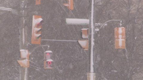 Waterloo, Ontario, Canada December 2014 Diverse people walking in blizzard snow wind  cold weather in major winter storm