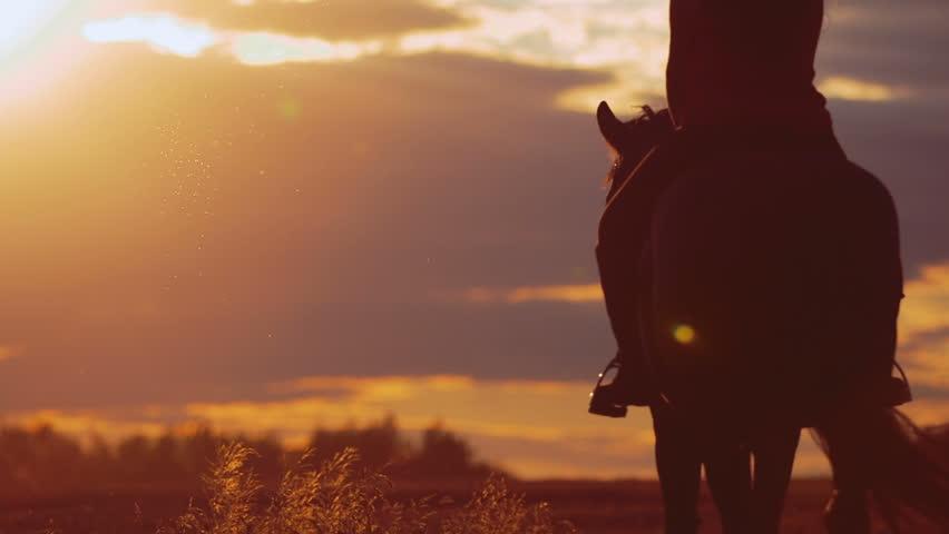 Beautiful girl riding a horse in countryside   Shutterstock HD Video #11048651