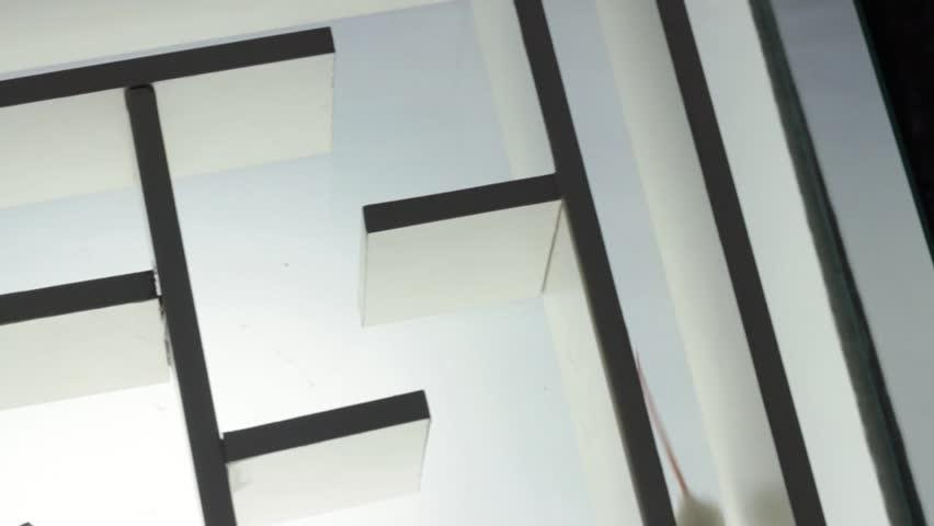 Lab rat in a maze
