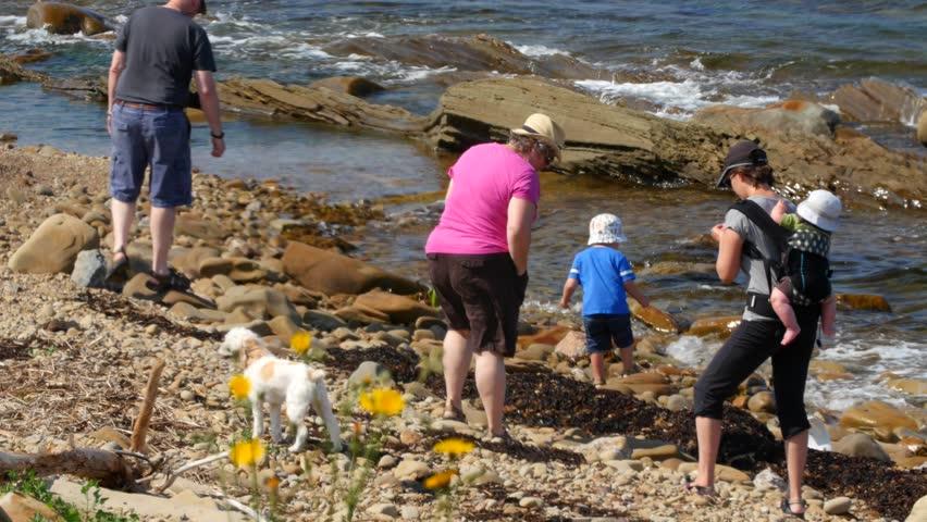 A family walks along a rock ocean shoreline beach in the morning | Shutterstock HD Video #11208662