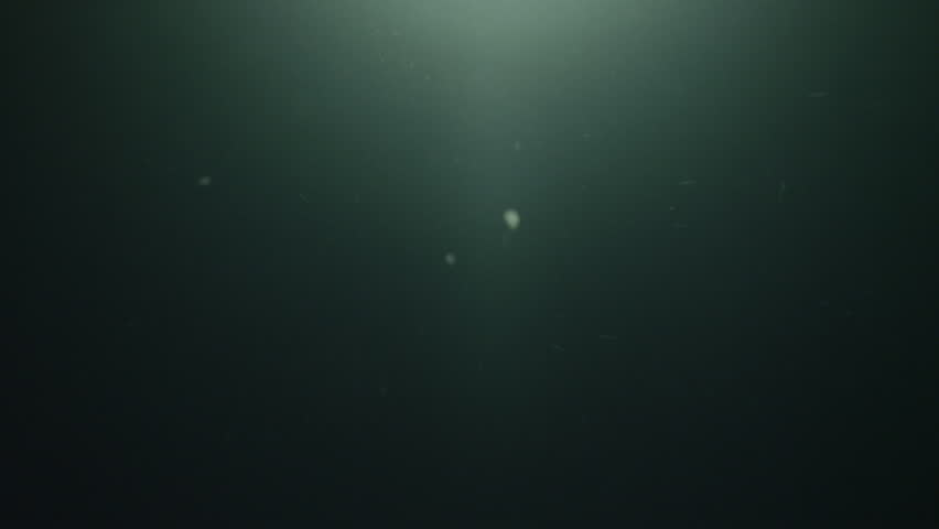 UW black water, particles, ray of light, Azores, 2012