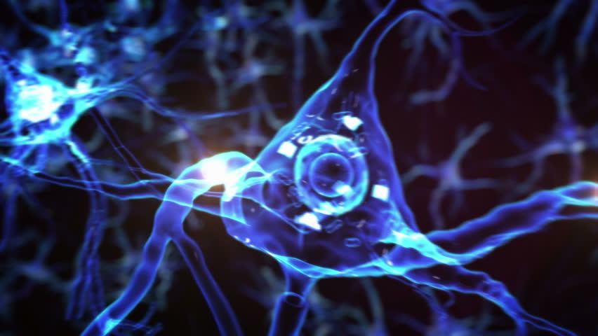 From neurons during synapses to a human head. Loopable. Biology. Dolly out. More options in my portfolio. #11728721
