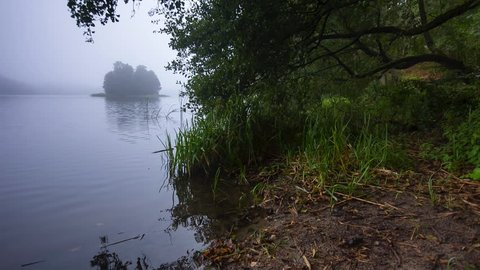 Autumnal foggy forest and lake. Full HD RAW video, 25fps