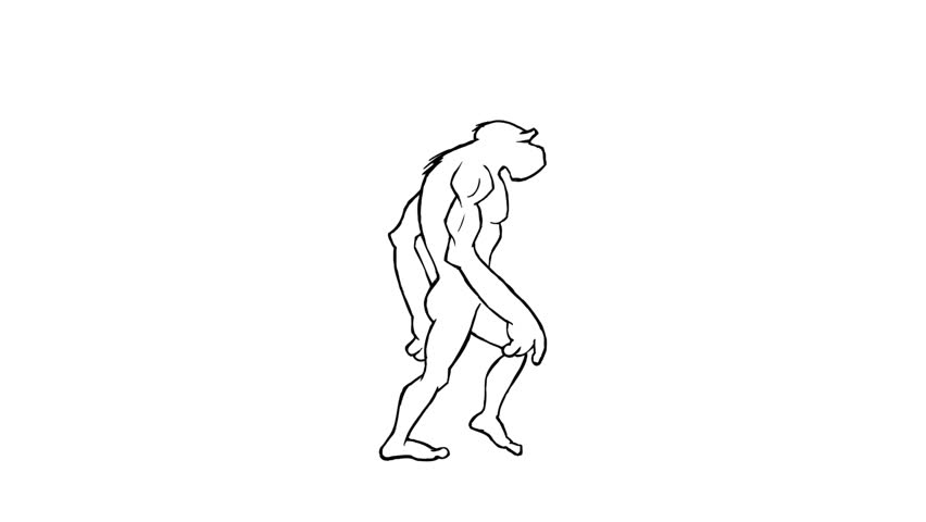Human evolution morph. Loopable. Alpha matte. Frame to frame hand made animation. From the ape to the homo-sapiens. Each walk is loopable. More options in my portfolio.
