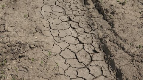 4K Zoom in of dry ground with desert texture, global warming and dramatic dryness by day