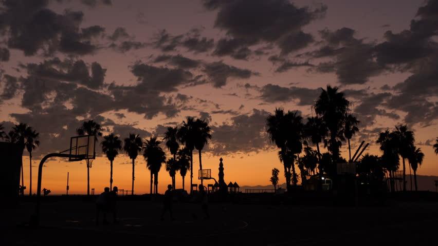 Palm Trees 01 Basketball Sunset Silhouettes Venice Beach California  | Shutterstock HD Video #11776616