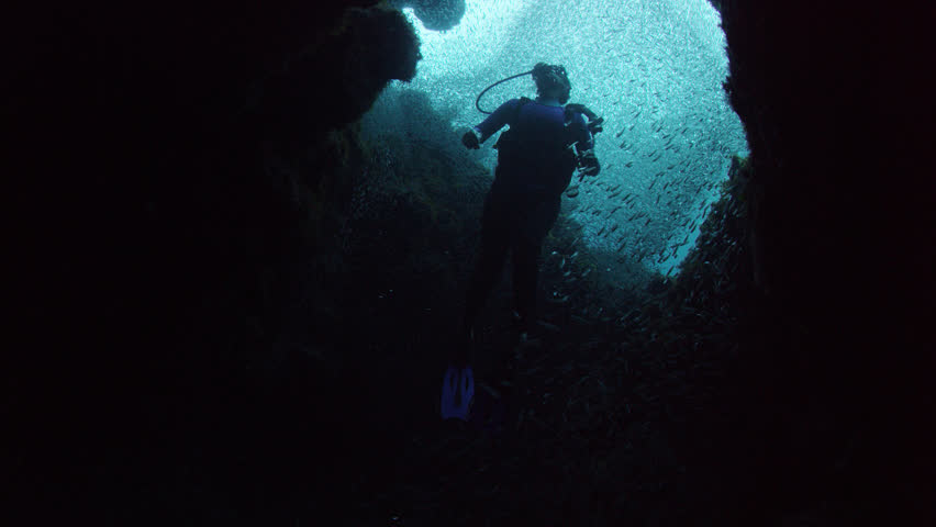 MS LA Diver swimming amongst school of fish and corals / Bahamas, 06/15/2014 | Shutterstock HD Video #11940155