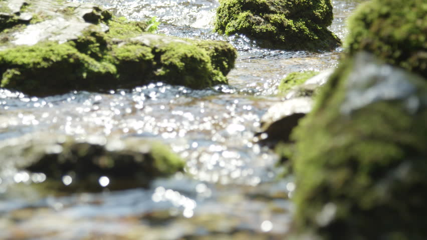 SLOW MOTION CLOSE UP: Spring river flowing between the mossy rocks