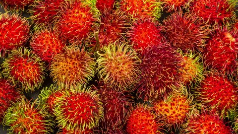 Rambutan sweet delicious fruit close up rotation.
