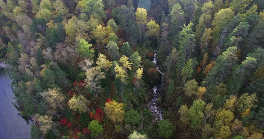 Aerial: Flying over the sunset autumn woods and forest stream | Shutterstock HD Video #12154604