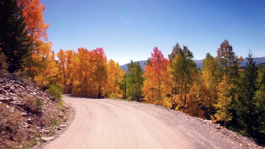 Driving down an old country road during autumn. Aspen trees are full of rich, vibrant colors like red, orange and gold.