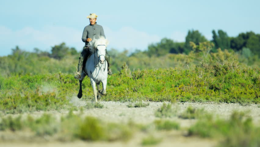 Cowboy Camargue, France rider white horse energy livestock running vegetation Mediterranean outdoors wetland freedom vacation travel RED DRAGON | Shutterstock HD Video #12327767