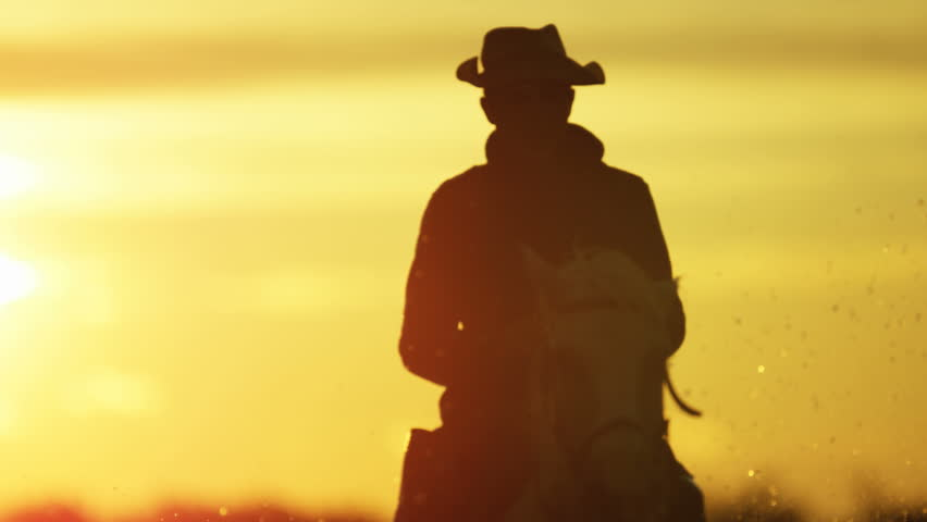 Cowboy Camargue rider animal horse sunset grey livestock nature France guardian Mediterranean sea running marshland freedom RED DRAGON | Shutterstock HD Video #12328043