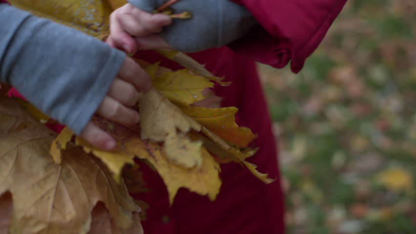 Woman making a wreath of yellow and red maple leaves | Shutterstock HD Video #12339323