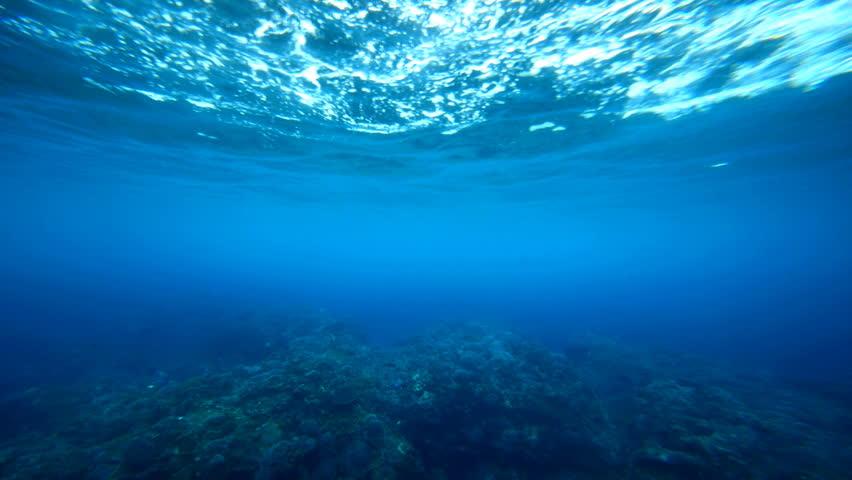 Underwater background. #1239175