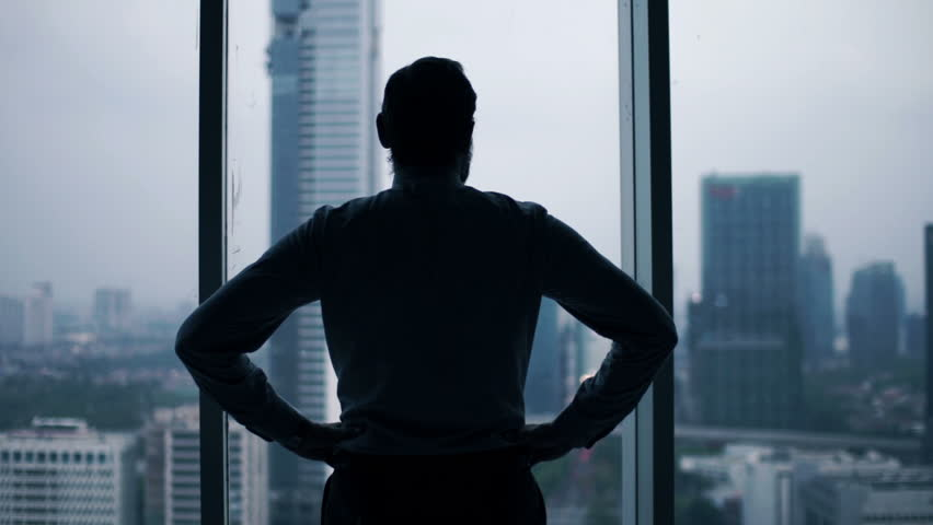 Young businessman admire view from window