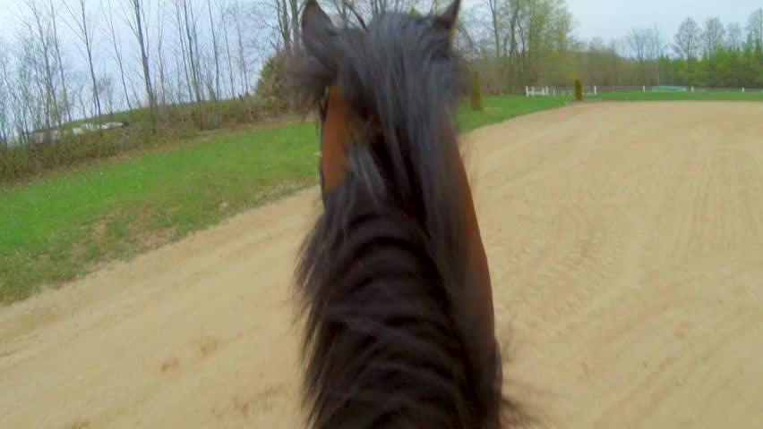 First Person View of Horseback Riding in Sand ring   Shutterstock HD Video #12472229