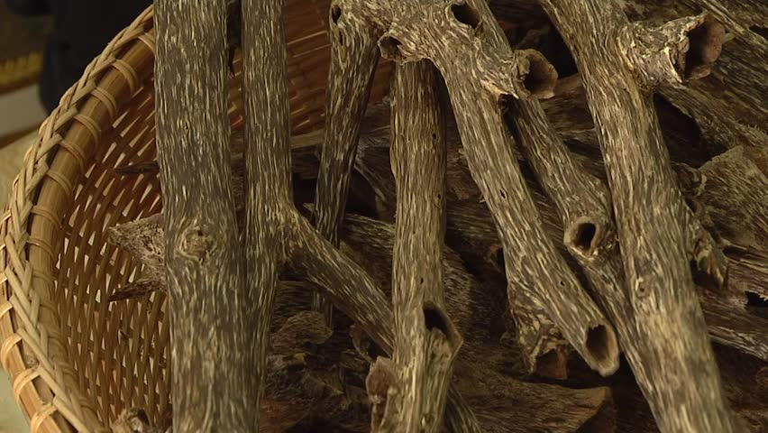 Agarwood.Agarwood commonly used to extract the oils .