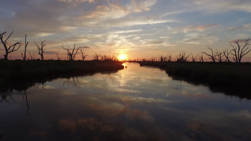 A beautiful southern Louisiana sunset over a bayou and stretch of water dotted with silhouettes of dead trees.