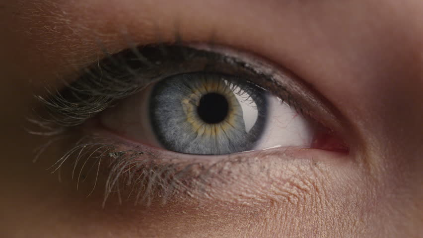 Close-up shot of a woman opening her blue eyes with light day make-up and focusing them. Shot on RED Cinema Camera in 4K (UHD). | Shutterstock HD Video #12698813