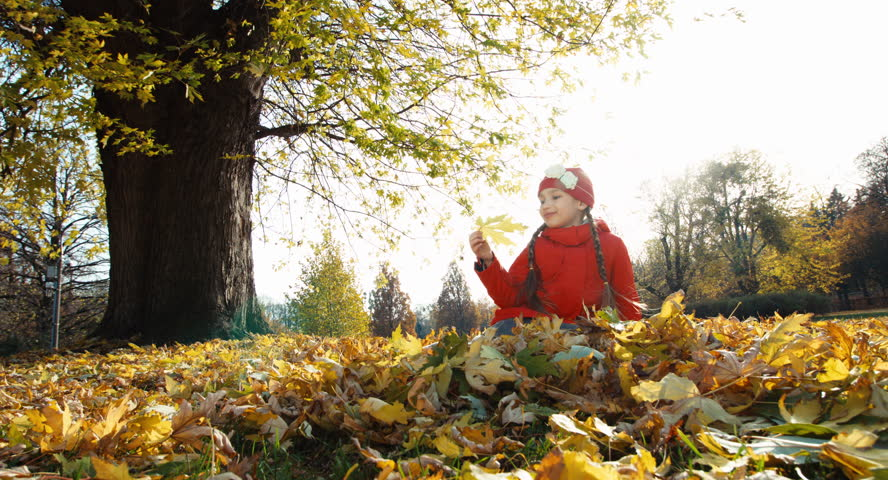 Child girl 7 years old collects a bouquet of autumn leaves in the park and smiling at camera | Shutterstock HD Video #12733679