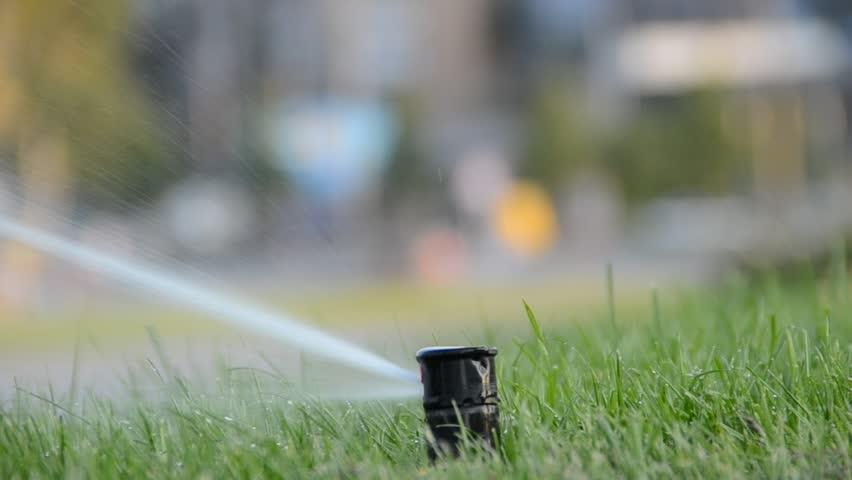 Watering of grass | Shutterstock HD Video #1276093