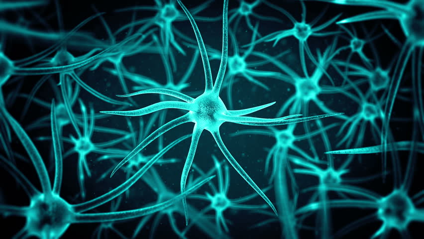 loopable science background with several neurons with depth of field #12852035