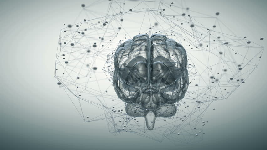 Animation illustrating the thought processes in the brain. Seamless looping | Shutterstock HD Video #12907916