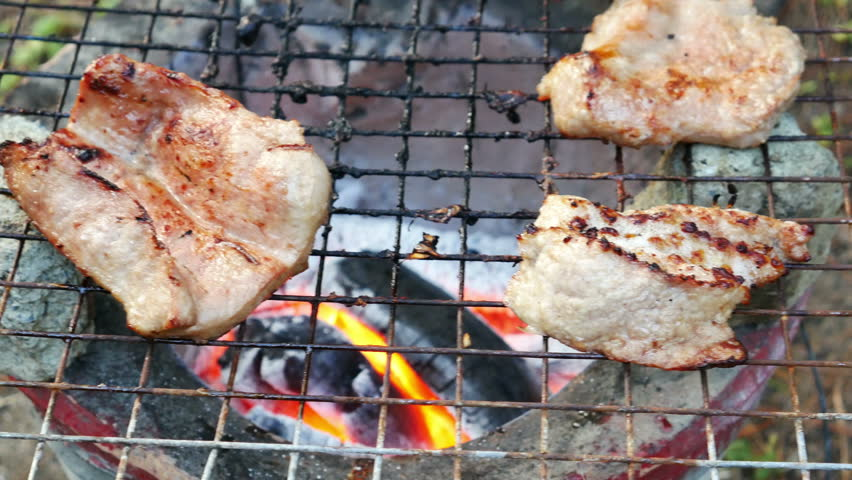 Bar-B-Q or BBQ with kebab cooking. coal grill   Shutterstock HD Video #13042445