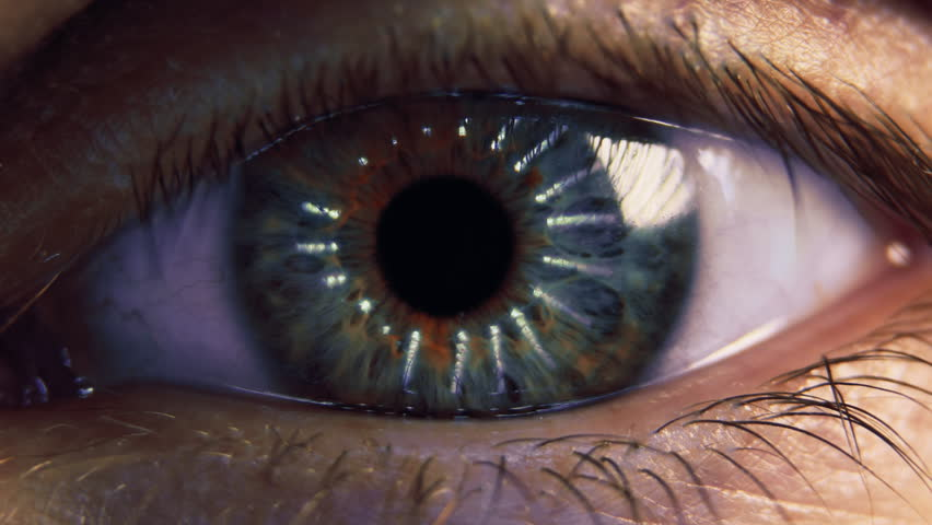 Eye iris and pupil macro. Reflected moving light rays into the human eye with zoom. Close up