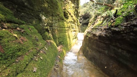 Water Stream Flowing 6