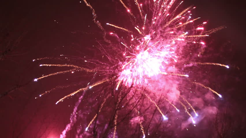 Holiday fireworks on night sky | Shutterstock HD Video #13118402