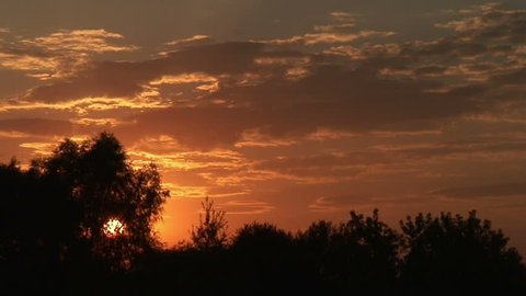 Time-lapse of sunset behind the trees 2